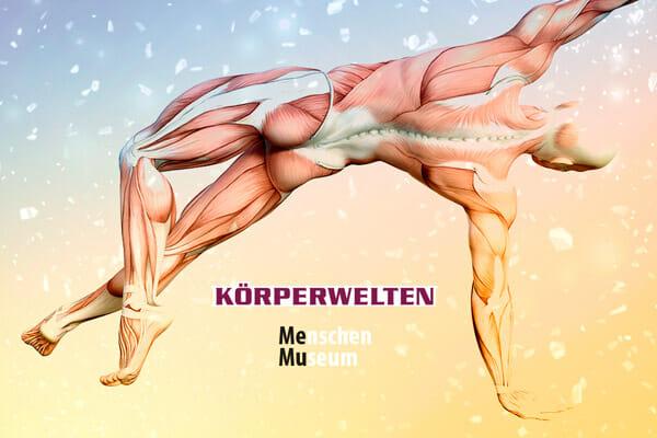 Spirit Yoga Faszien-Workshop im Menschen Museum Berlin