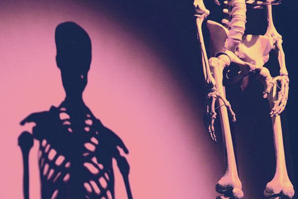 Yoga-Anatomie bei Spirit Yoga